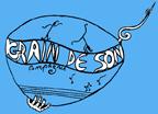 COMPAGNIE GRAIN DE SON